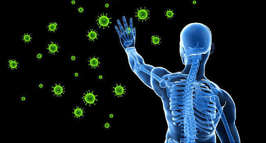 Strong immunity prevents body from diseases.