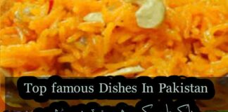 Top pakistani dishes